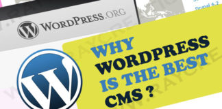 Why WordPress Is The Best Platform For Your Business Website