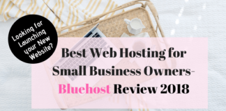 Best Web Hosting for Small Business Owners- BlueHost Review 2018